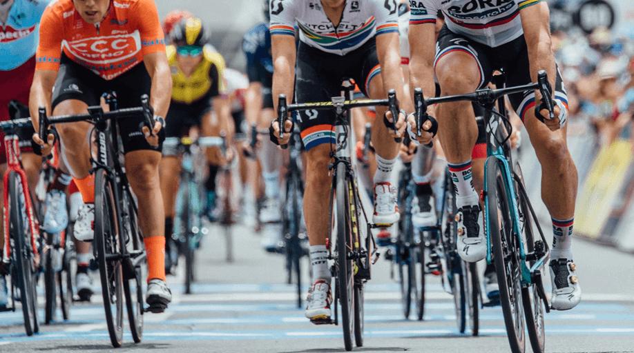 Estas son las bicicletas de los equipos World Tour 2019
