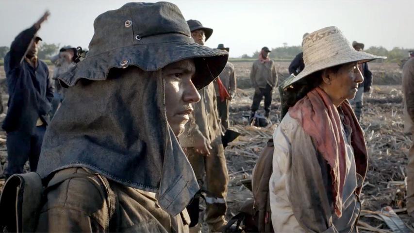 'En cine nos vemos' se toma las noches de febrero
