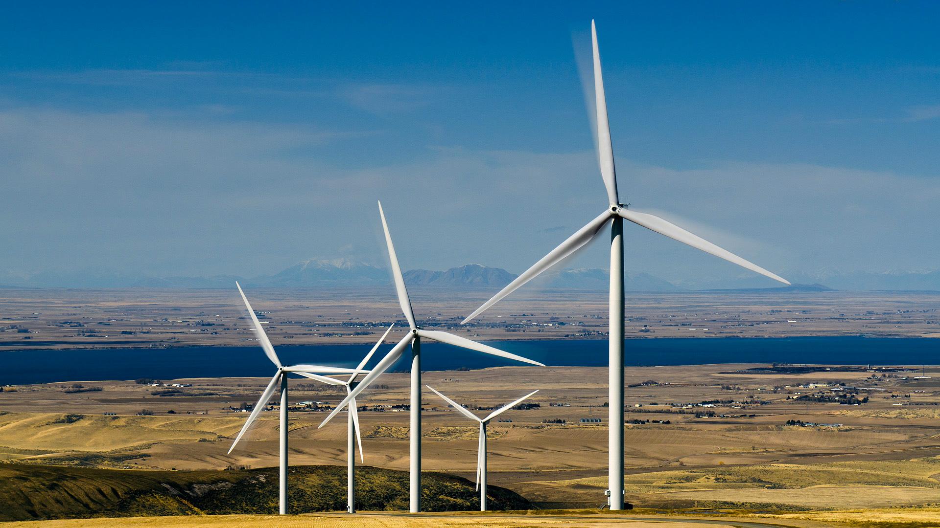 Molinos de viento en el campo.