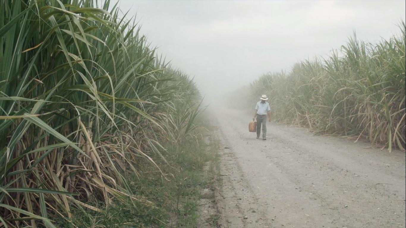 Fotograma de la película La tierra y la sombra