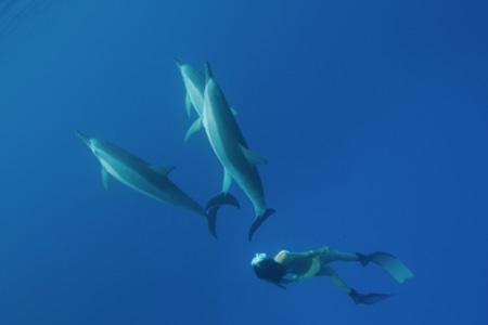 Documental: Madre océano