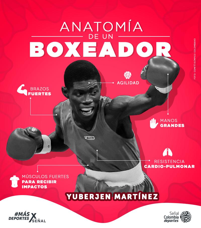 Así funciona el cuerpo de un boxeador