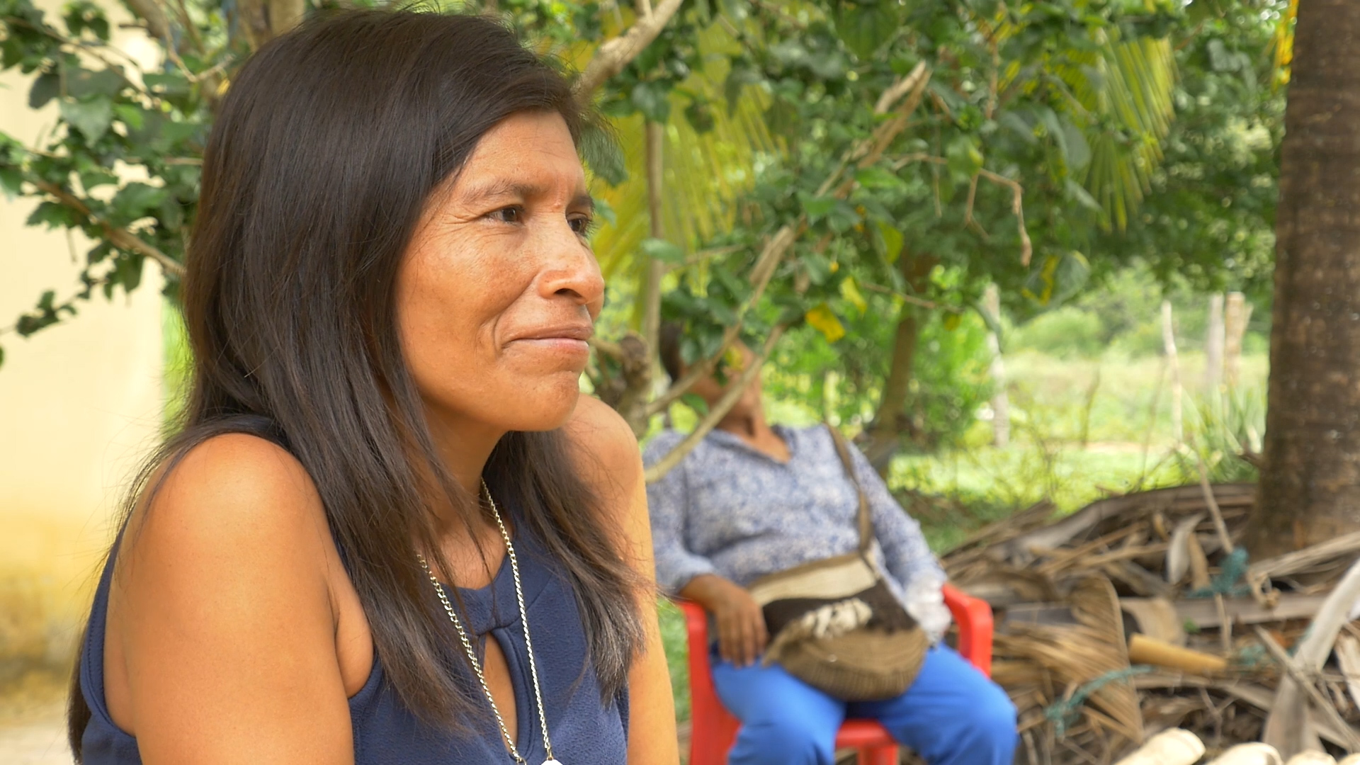 MARURES MANARANDE DOCUMENTAL SENAL COLOMBIA RTVC