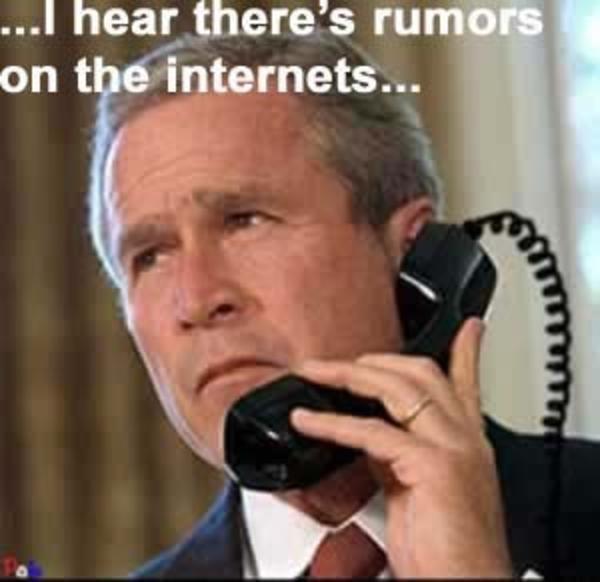 Meme de George Bush