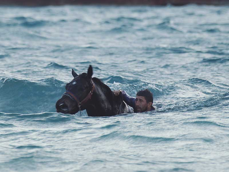 Un caballo y su entrenador se preparan para una carrera en el documental footprints
