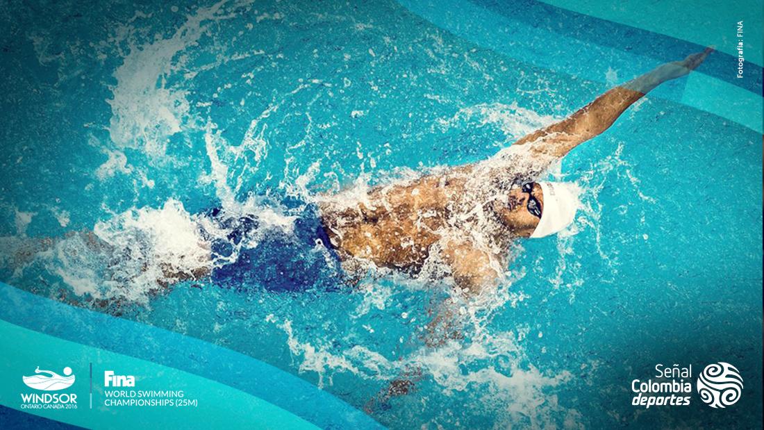 La natación, uno de los deportes más completos / FINA