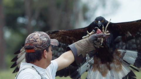 Fotograma de la serie Héroes al rescate animal.