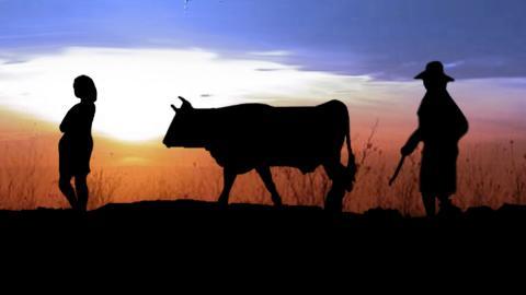 Dos mujeres y una vaca