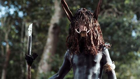 'Amazonas', 6 visiones de la selva