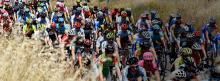 Pelotón del Giro de Italia durante la quinta etapa / Giro de Italia oficial