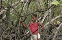 """Imagen de la serie documental """"Instinto de conservación"""""""
