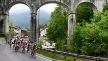 Pelotón del Giro de Italia / Giro oficial