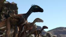 Reino de dinosaurios