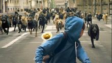 Imagen de la película 'Buscando a Hagen'.
