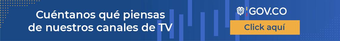 Tv -publica