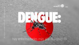 dengue, enfermedad transmitida por mosquito