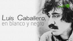 memorias delartista colombiano,Luis Caballero