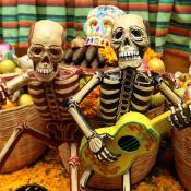 Imagen tomada de www.ejecentral.com.mx