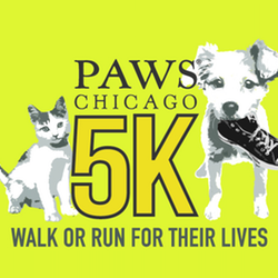 PAWS Chicago 5k