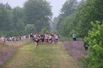 2009-08-08_08-04-16.jpg