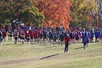 2010-10-16_10-54-14.jpg