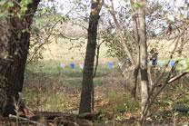 2010-11-06_12-37-30.jpg