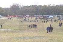 2010-11-06_10-54-19.jpg