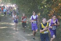 2010-10-09_11-05-41.jpg