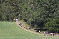 2010-08-28_11-04-36.jpg