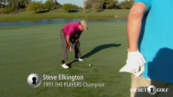 Steve Elkington: Divot Shot