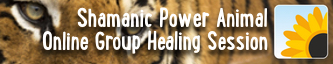 Shamanic Power Animal Journey - Group Online Healing Session