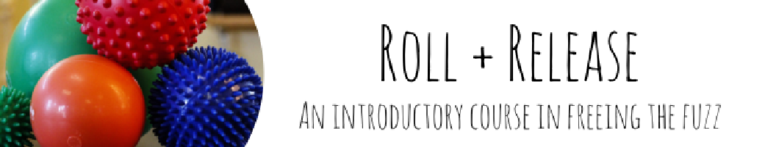 Roll + Release - An Introductory Course on Freeing the Fuzz