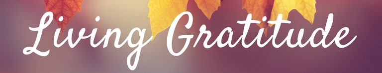 Living Gratitude Retreat