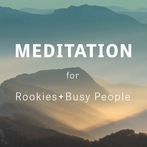 Meditation for Rookies and Busy People