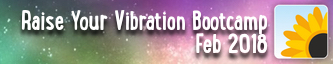 Raise your Vibration Bootcamp Feb 2018