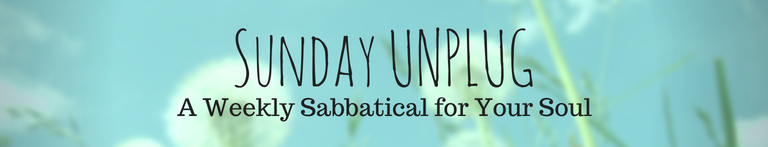 Sunday Unplug