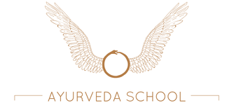 Shakti School 2019 Ayurvedic Health Counselor Program