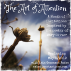 The Art Of Attention: A Month of Invitations Inspired by the Poetry of Mary Oliver