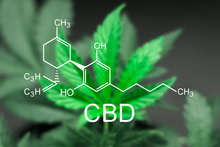 CBD Oil; What You Need to Know