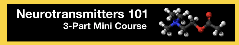 Neurotransmitters 101: 3 Part Free Mini Course
