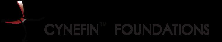 Cynefin® Foundations (2020.3)