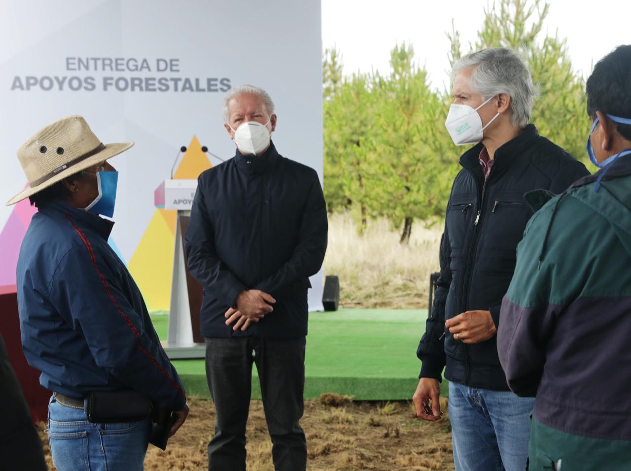 ENTREGA ALFREDO DEL MAZO APOYOS FORESTALES  PARA BENEFICIAR LA ECONOMÍA FAMILIAR