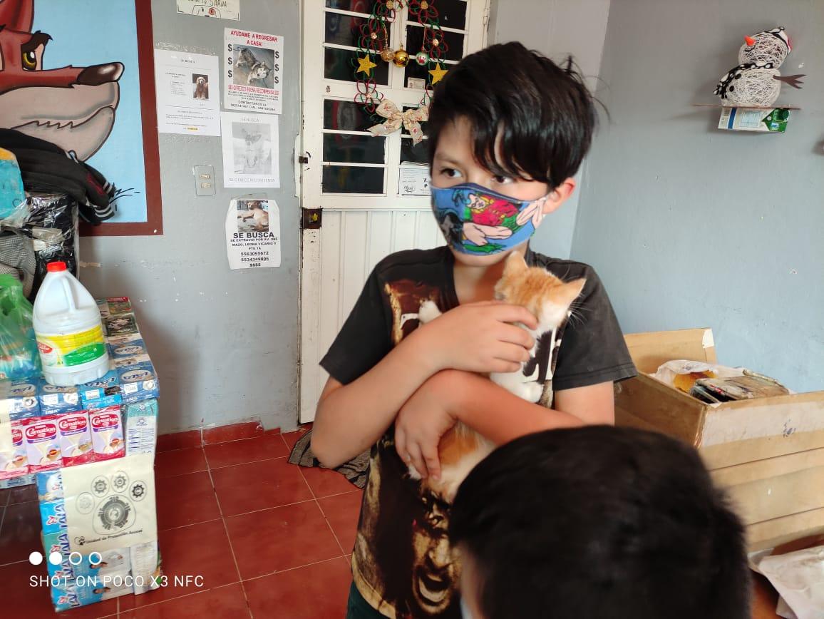 RESCATAN A PERRITOS Y GATITOS DE VIOLENCIA ANIMAL EN VALLE DE CHALCO