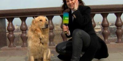 VIDEO: PERRO ROBA MICRÓFONO A UNA REPORTERA EN RUSIA