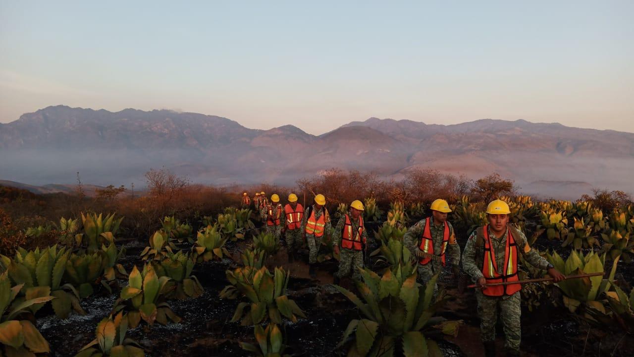 LLUVIAS AYUDAN A COMBATIR LOS INCENDIOS FORESTALES EN MÉXICO