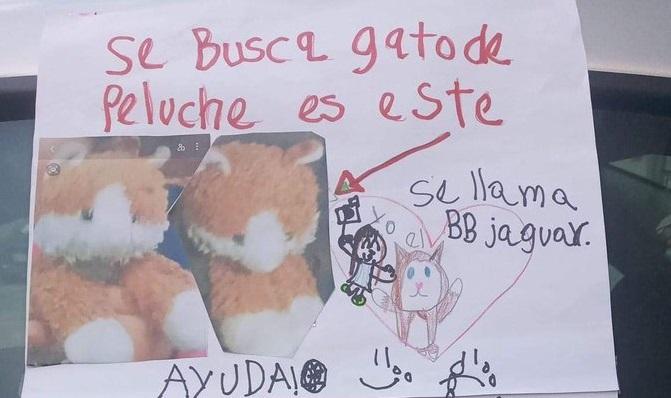 NIÑO OFRECE UN DULCE DE RECOMPENSA POR SU GATO DE PELUCHE EXTRAVIADO