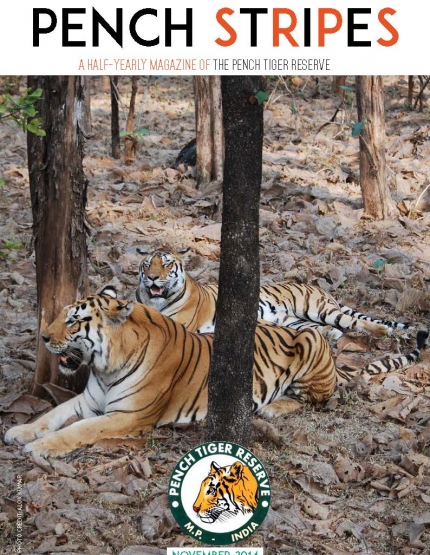 Pench Stripes- 2014 Edition - Explore the Evets and Issues in Wildlife Management