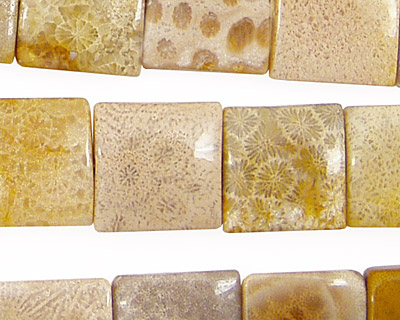 Fossil Coral Puff Square 14mm