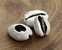 White Enamel on Silver Finish Cowrie Shell 14-17x19-25mm