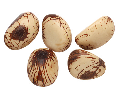 Tagua Nut Cream Nugget 40-45x32-36mm